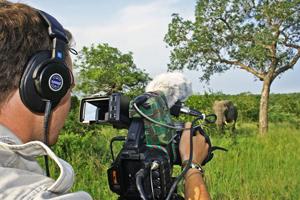 Content Filming Safari