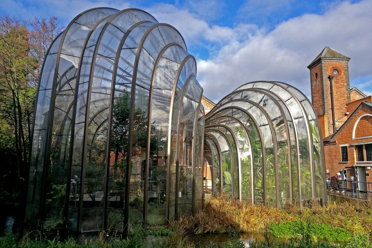 5-star-stories-bombay-gin-distillery